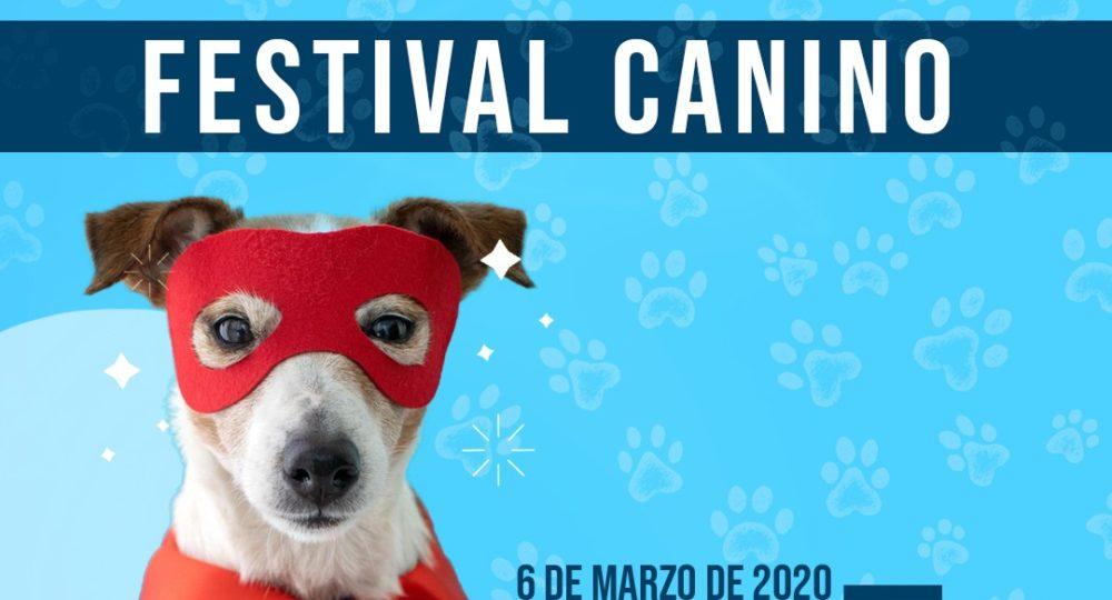 Fetival-Canino-1000x540